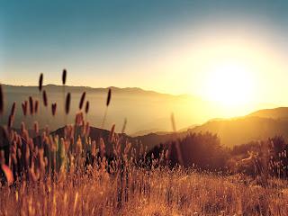 güneşi selamla. daima!