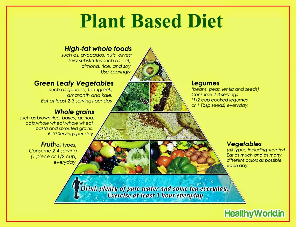 plant based diet essay Want to know how to start a whole food plant based diet check out these easy and powerful tips to ensure your success - you can also join our free online course.