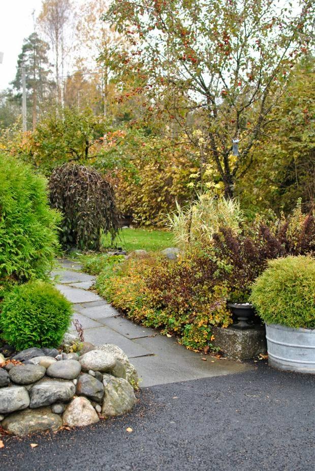 höst trädgård