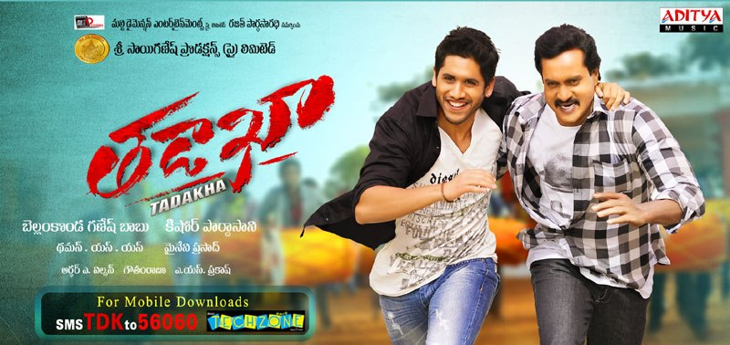 Watch Tadakha Telugu 2013 Movie Online