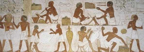 specialization evolusi zaman dan peradaban