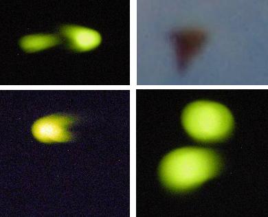 Australia UFOs