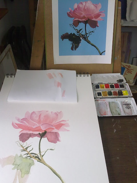 copia de fotografia de una rosa