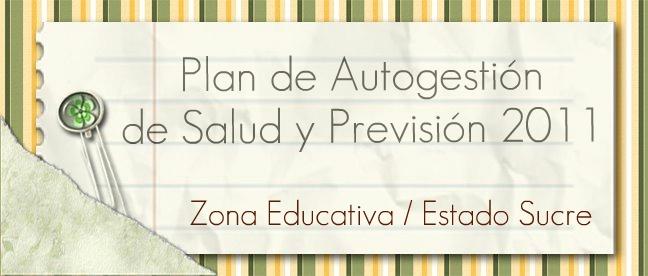 PLAN DE AUTOGESTIÓN DE SALUD Y PREVISIÓN 2011