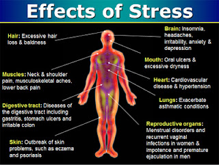 effects of stress on academic performance Researchers at both columbia university and the university of san diego conducted a study to determine how stress negatively affects academic performance and enrollment they were inspired by the fact that nearly 25% of students polled in the national college health assessment said that they.