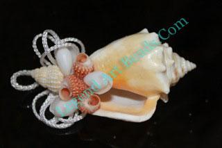 Mini Conch Shell