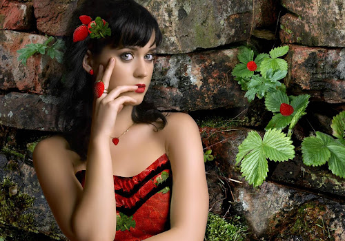 Katy Perry Glam Wallpapers