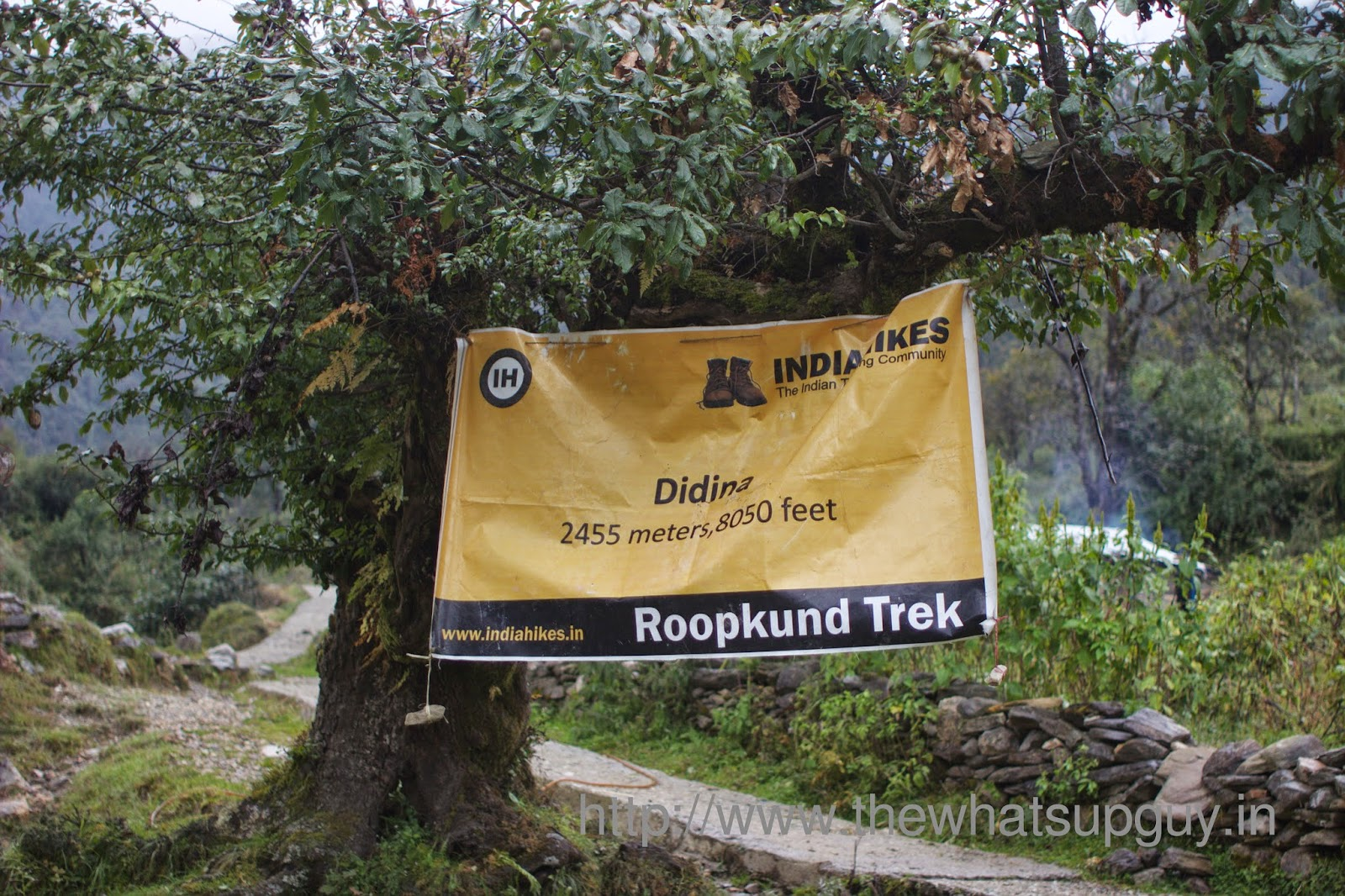 Didina-Roopkund-Trek-With-India-Hikes-Day-1