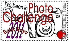 Photo Challenge Balik Raya 2011
