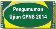 Pengumuman Ujian CPNS 2014