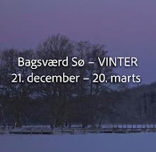 Bagsværd Sø – VINTER