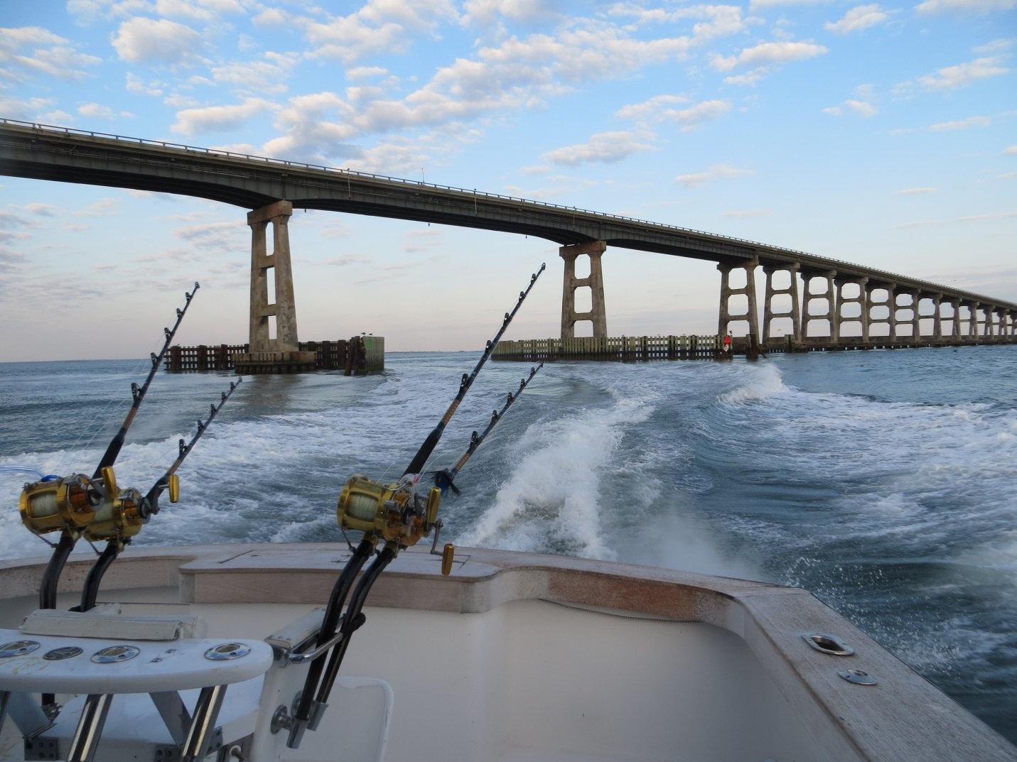 Tag a giant tag north carolina 2013 it s a wrap for Oregon inlet bridge fishing report
