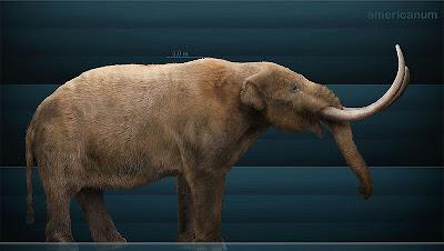 elefantes en america Mammut