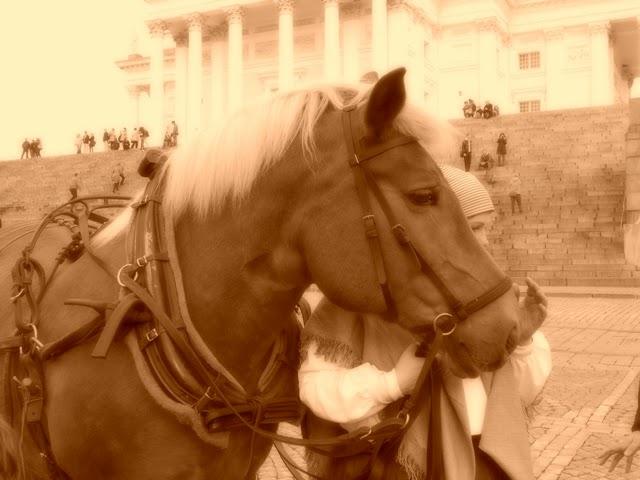 Autonomian aika: luotettava hevonen