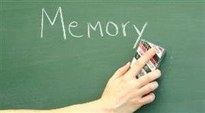 Manfaat terong yang dapat menjaga fungsi memori