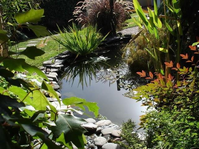 Arte y jardiner a dise o de jardines proyecto de un for Jardines acuaticos