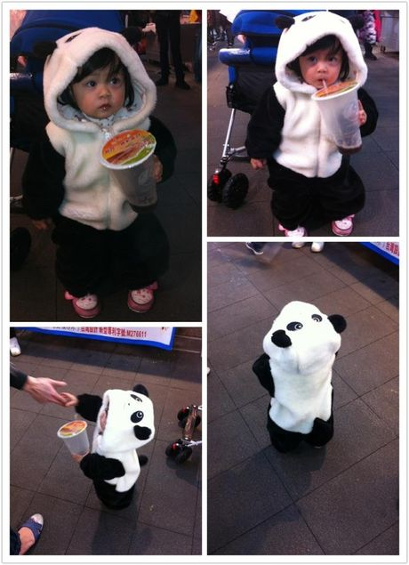 funny panda costume