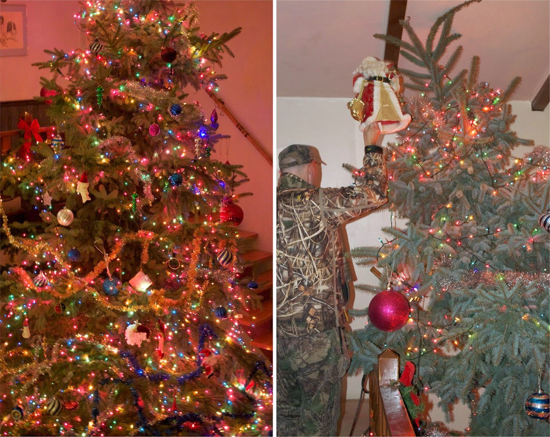 Annual Giant Christmas Tree Party | Robin Davis Studio