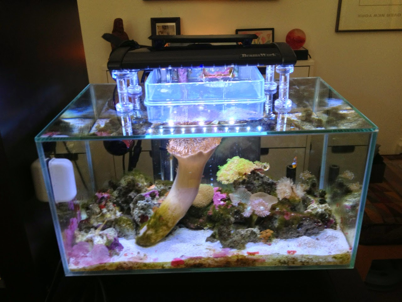 ikeahackers.net & Guppy-Guide: Aquarium Light Stand - DIY