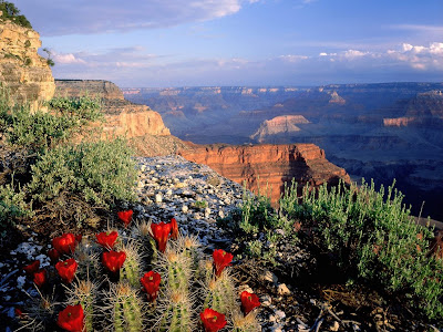 Grand Canyon-Tourist Attractions in U.S.A