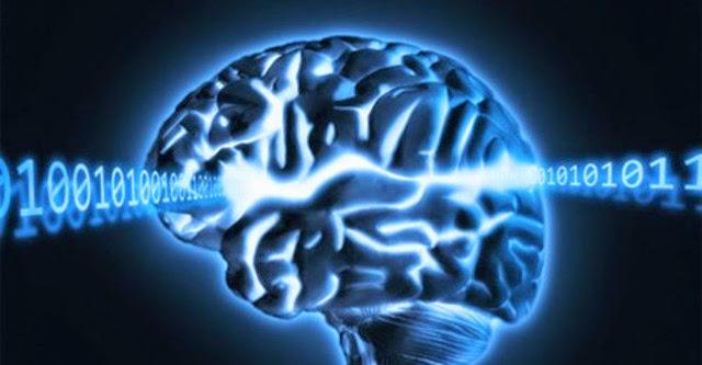 Giúp não bạn thông minh hơn