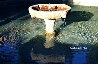descalza tu alma, escribir, amar, amor, realidad, sentimientos, reflexiones, quotes, Cuarto Real de Santo Domingo, fuente, reflejos, alma, José Luis López Recio, joselop44, Granada,