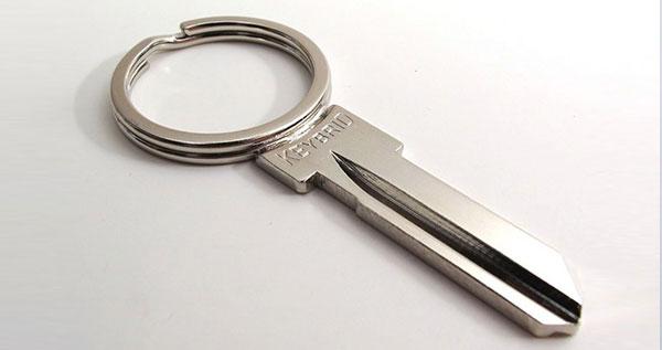 Keybird Keyring Key - blank