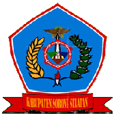 Pengumuman CPNS Kabupaten Sorong Selatan