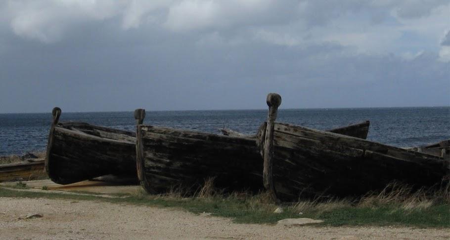 Barche da mattanza