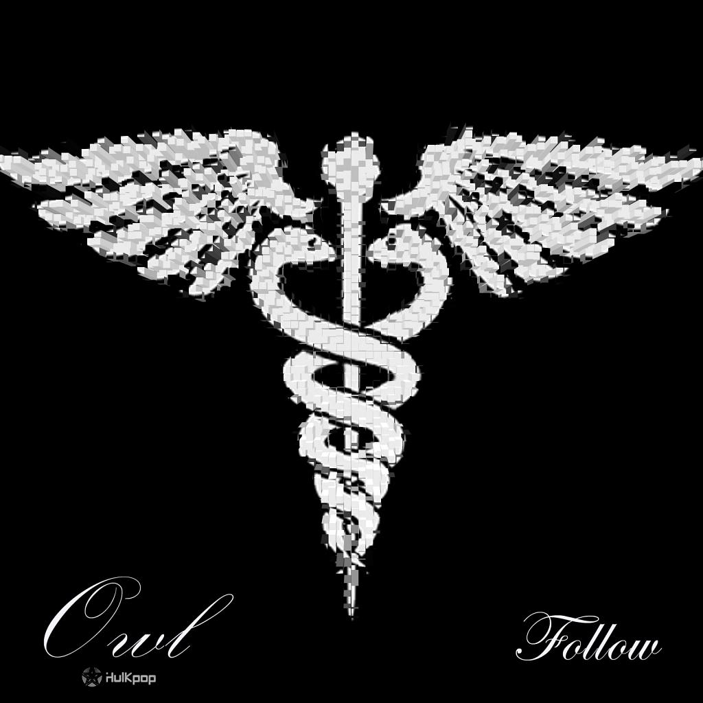 [Single] Owl – Follow