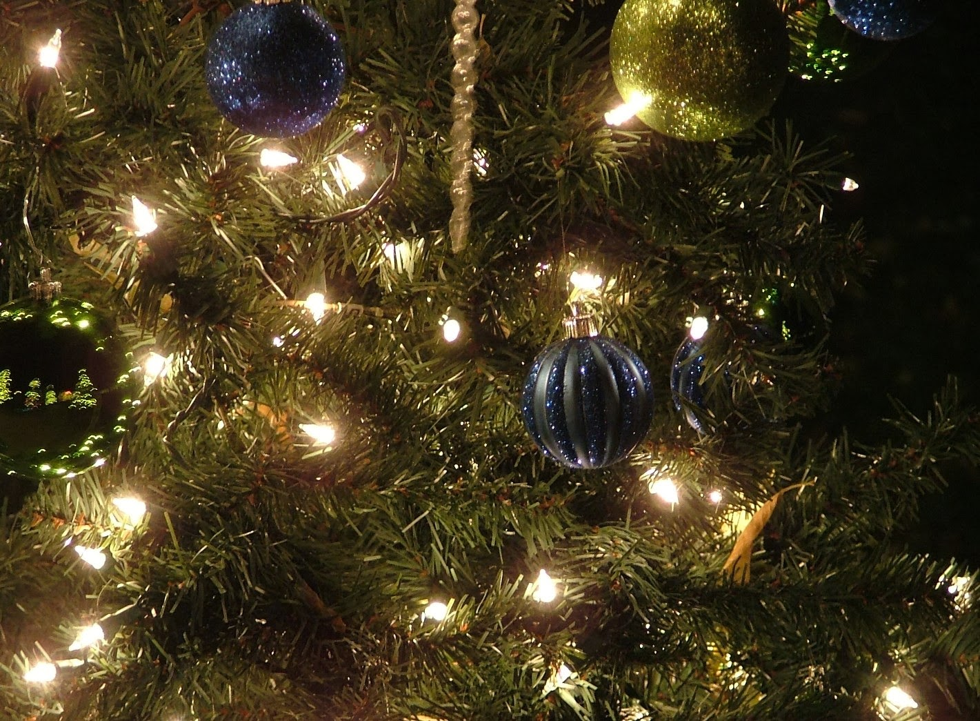 christmas tree biblical meaning