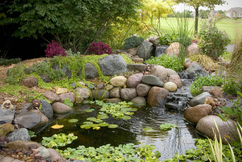 Aquascape your landscape small ponds pack a punch Small backyard waterfalls and ponds