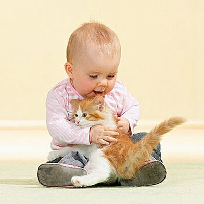 Little baby boy with cute pet kitten hugging picture