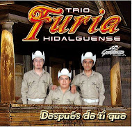 FURIA HIDALGUENSE