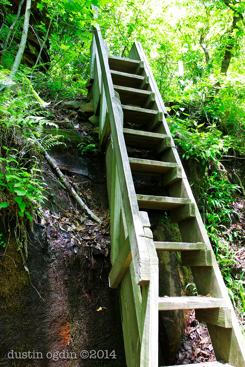 Virgin Falls State WIlderness Area - stairwell on the way to Martha's Pretty Point