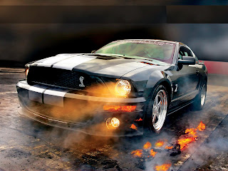 Ford Shelby GT500 Pictures