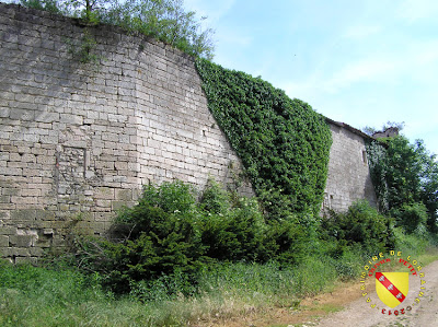 MARTINCOURT (54) - Le château de Pierrefort