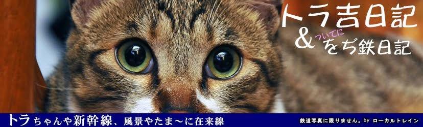 をぢ鉄日記