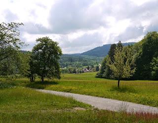 Blick von Nordwesten auf Moosbronn