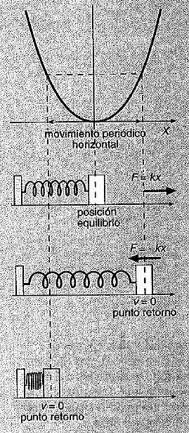 Pendulo y muelle 3