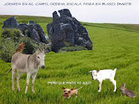 Senderismo-Malaga, Escalada-Malaga, Rutas-Malaga, Campo-Malaga, Paisajes-Malaga, Avistamiento-aves-Malaga, parajes-naturales-malaga