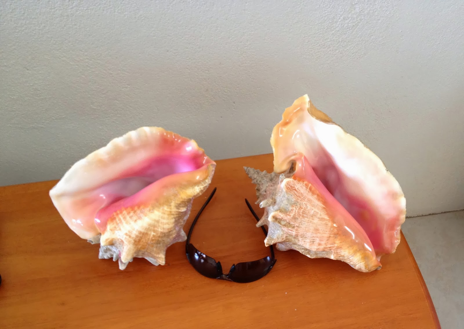 how to clean conch meat