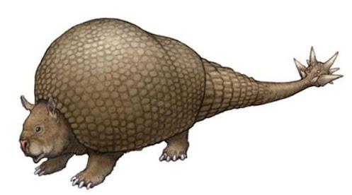 xenathra diez mil años atras Doedicurus