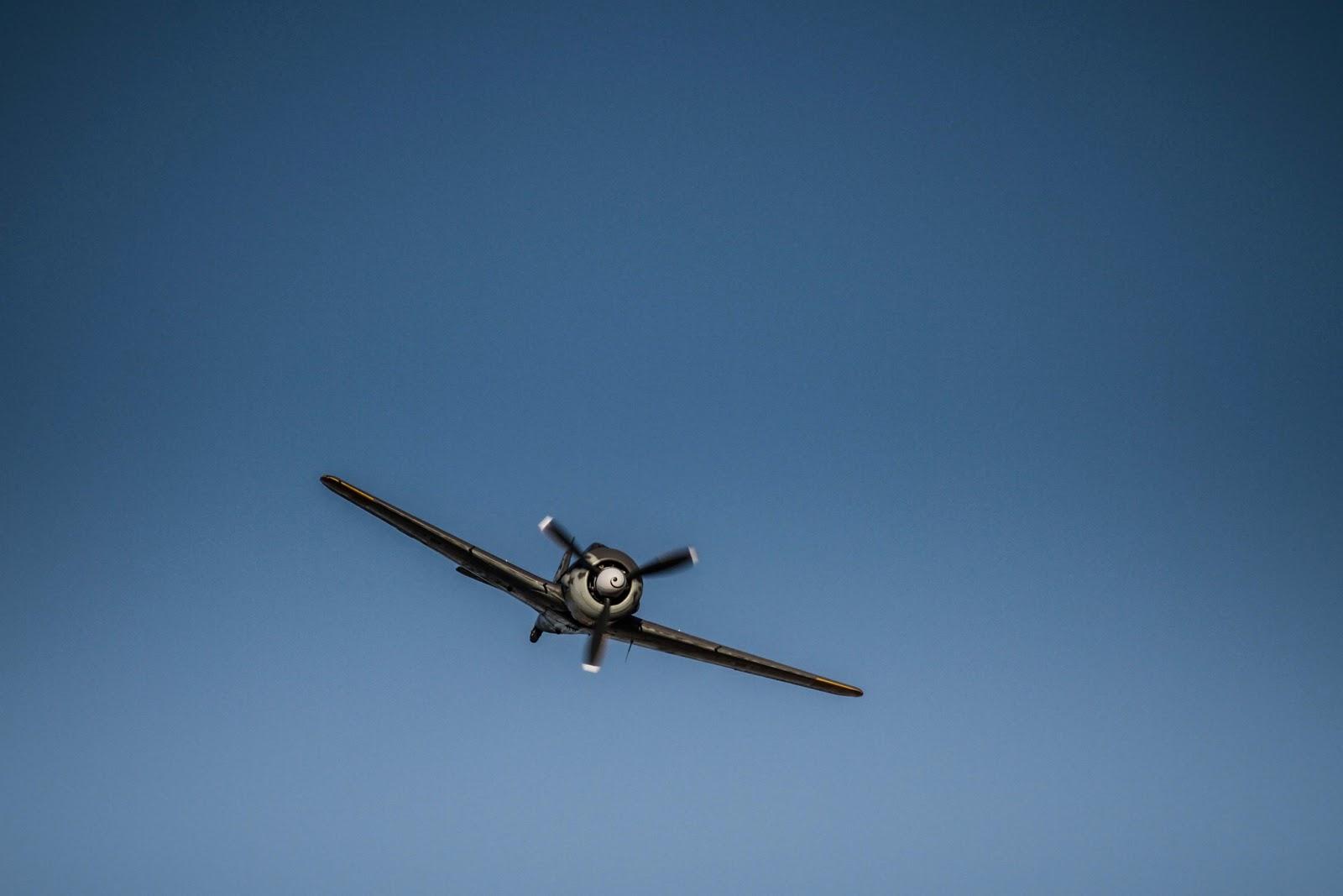 Focke-Wulf Fw 190 Omaka 2013