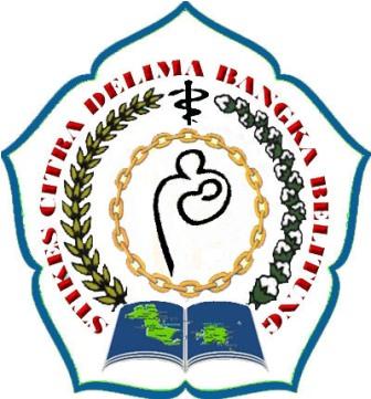 stikes citra delima bangka belitung januari 2013