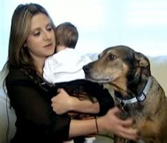 Grateful Dog Saves Baby