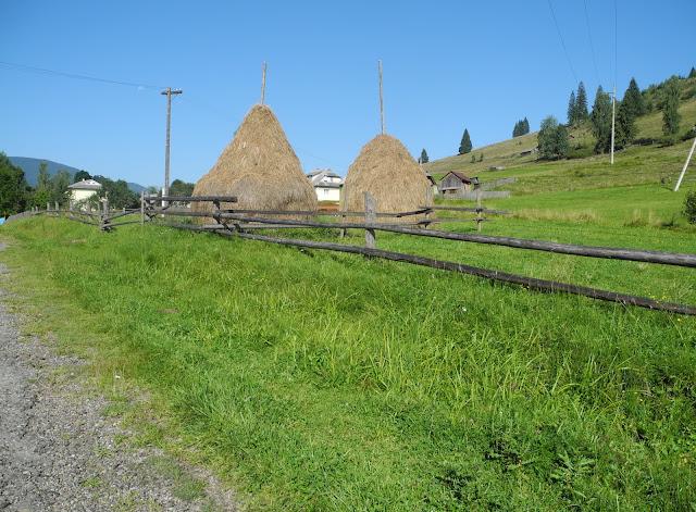 Hay bales, done manually, Carpathian Mountains, West Ukraine