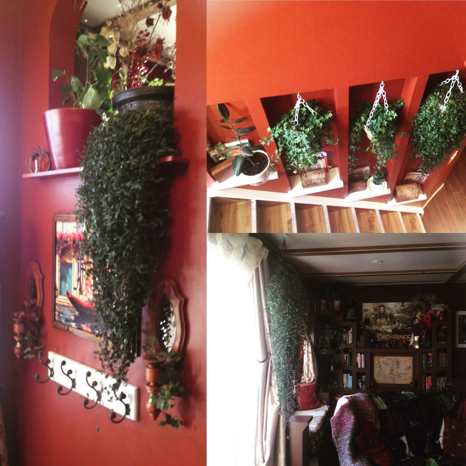 My Plants.