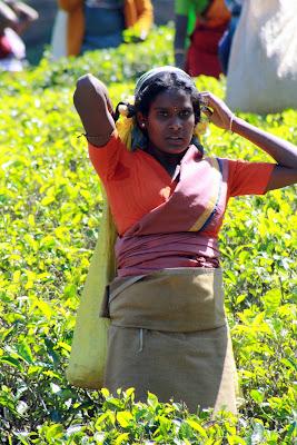 Mujer de Sri Lanka