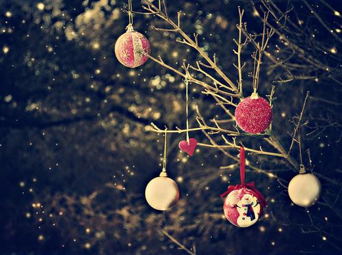 Getting into Christmas spirit- BAKEMAS!